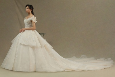 Elegant Off-the-Shoulder Tulle Lace Bridal Gown Ball Gown Floor Length Wedding Dress_4
