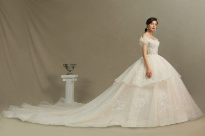 Elegant Off-the-Shoulder Tulle Lace Bridal Gown Ball Gown Floor Length Wedding Dress_5