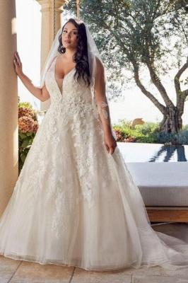 Glamorous Sleeveless V Neck Tulle Lace Wedding Dresses A-Line_1