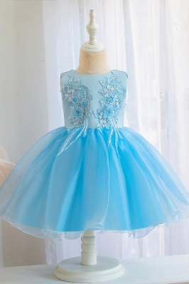 Sweet Jewel Tulle Flower Girls Dresses With Appliques_4