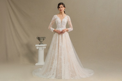 Graceful Long Sleeves Tulle V Neck Wedding Dresses With Lace Appliques_4