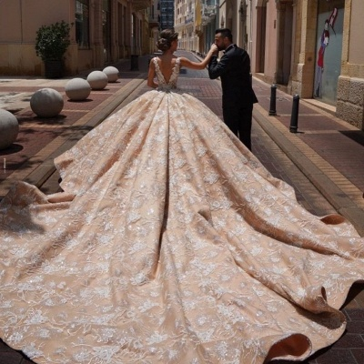 Floral Sleeveless V Neck Cathedral Train Nude Pink Wedding Dresses With Lace Appliques_4