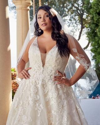 Glamorous Sleeveless V Neck Tulle Lace Wedding Dresses A-Line_3