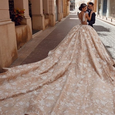 Floral Sleeveless V Neck Cathedral Train Nude Pink Wedding Dresses With Lace Appliques_3