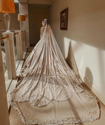 Elegant Long Sleeves Champagne Lace Wedding Dresses Long_2