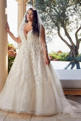 Glamorous Sleeveless V Neck Tulle Lace Wedding Dresses A-Line