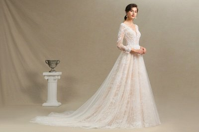 Graceful Long Sleeves Tulle V Neck Wedding Dresses With Lace Appliques_10