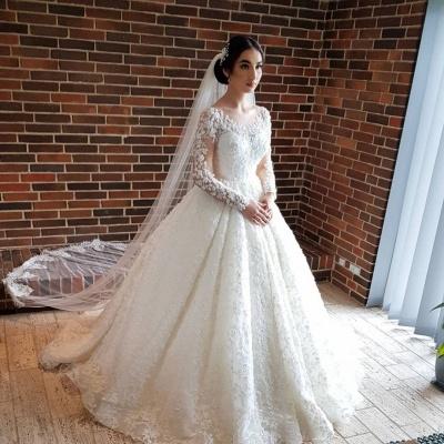 Long Luxury Princess Long Sleeves Jewel Lace Wedding Dress_2