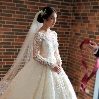 Long Luxury Princess Long Sleeves Jewel Lace Wedding Dress_3