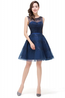 A-Line Sleeveless Crew Tulle Appliques Short Prom Dresses_4