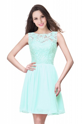 Cheap Short Chiffon Homecoming Dresses | Affordable Knee Length Chiffon Lace Party Dresses_9