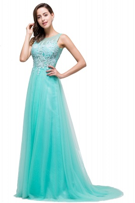 Cheap A-line Court Train Tulle Evening Dress with Appliques in Stock_11