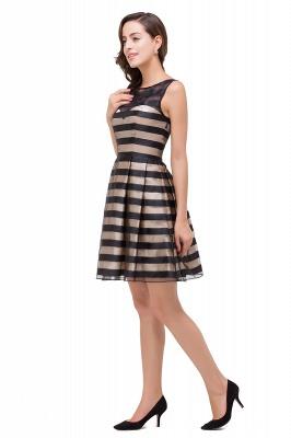 A-line Scoop Sleeveless Short Tulle Prom Dresses_8