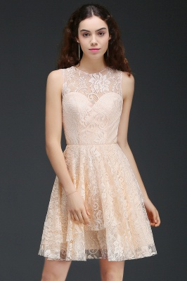Cheap Modern Lace Pearl Pink Illusion Sleeveless Short Homecoming Dress in Stock_4