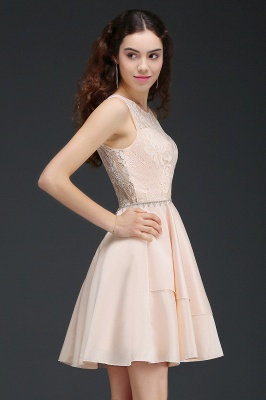 A-line Short Cute Homecoming Dress With Lace_6