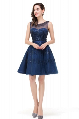 A-Line Sleeveless Crew Tulle Appliques Short Prom Dresses_5