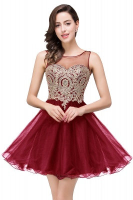 ESTRELLA | A-line Crew Short Sleeveless Appliques Prom Dress_1