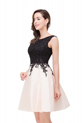 Cheap Short A Line Applique Tutu Prom Party Dress in Stock_10