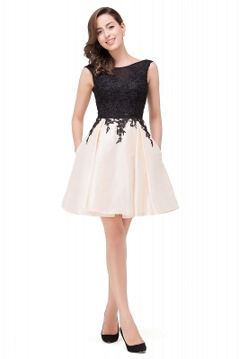 Cheap Short A Line Applique Tutu Prom Party Dress in Stock_11