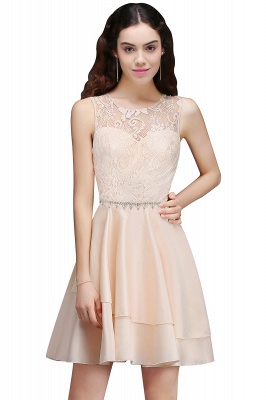 A-line Short Cute Homecoming Dress With Lace_1