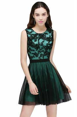 Cheap Short Lace Appliques Tulle Sleeveless Prom Dress in Stock_3
