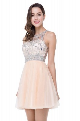 ELISA | A-line Crew Sleeveless Tulle Short Prom Dresses with Beadings_2