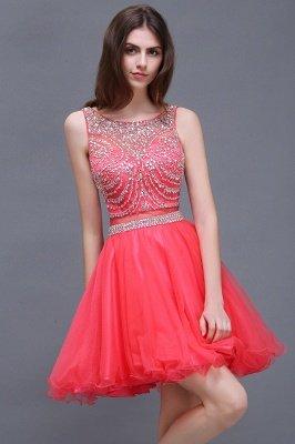 Rose Beads Applique Cute A-Line Crystal Short Sleeveless Evening Dresses_5