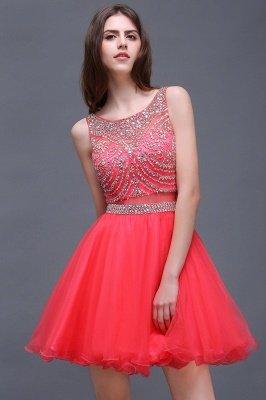 Rose Beads Applique Cute A-Line Crystal Short Sleeveless Evening Dresses_6