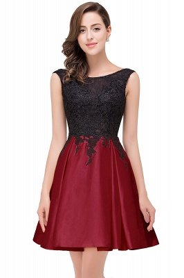 Cheap Short A Line Applique Tutu Prom Party Dress in Stock_4