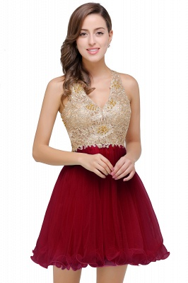 Cheap Short Tulle A-line V-Neck Appliques Sleeveless Prom Dress in Stock_1