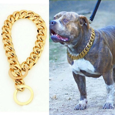 Stainless Steel Chain Dog Collar Big Gold Plated Curb Training Walking Slip Link_1