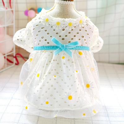 Short Sleeeve Ruffles Lace Pet Skirt With Collars