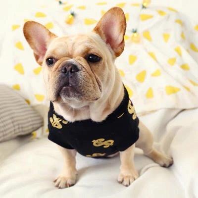 Black Print Jewel Short Sleeve Dog T-shirt_1