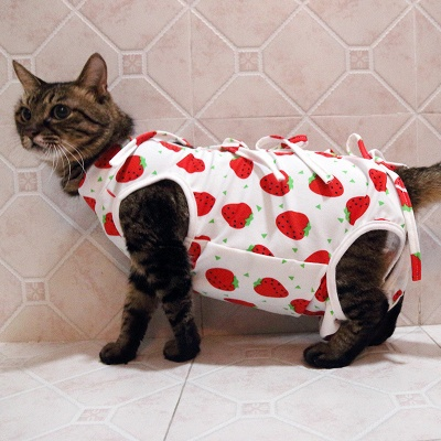 Cat Sterilization Clothing Cat Weaning Clothing Anti-bite Anti-pet Breathable_3