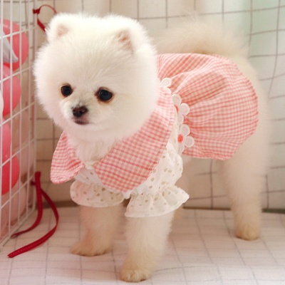 Adorable Pink Grid Short Sleeve Pet Skirt Covered Belly_1