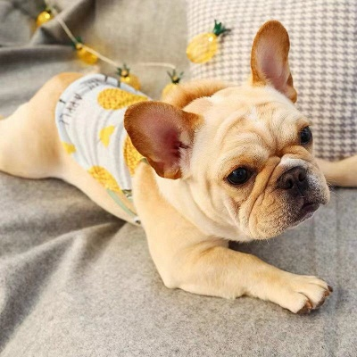 Casual Canine Camp Shirt for Dog Fashion Pet Clothing_1