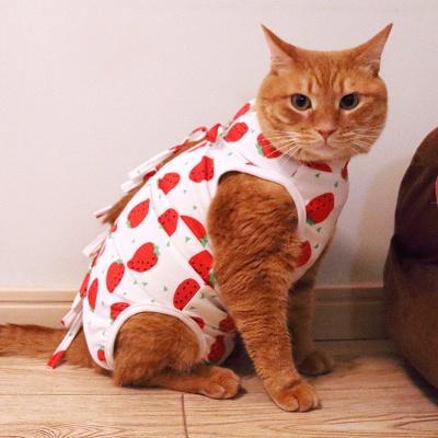 Cat Sterilization Clothing Cat Weaning Clothing Anti-bite Anti-pet Breathable