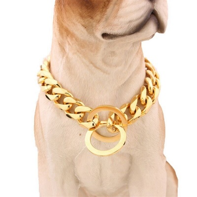 Stainless Steel Chain Dog Collar Big Gold Plated Curb Training Walking Slip Link_7