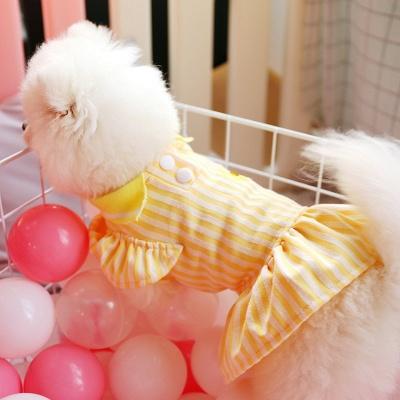 Yellow Stripe Short Sleeve Girl Dog Skirt With Collar_5