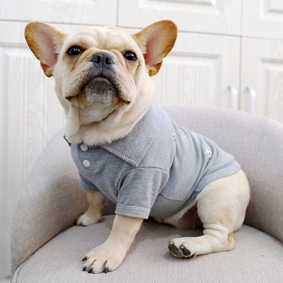 Gray Short Sleeve Dog T-shirt With Collar For small Puppy_3
