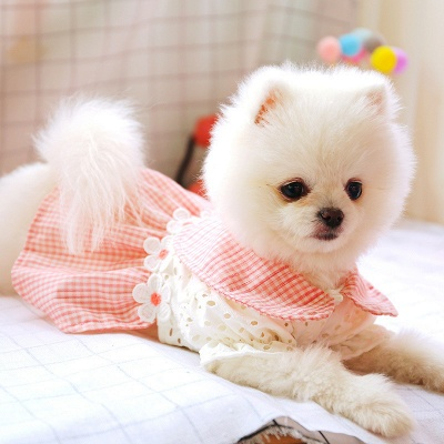Adorable Pink Grid Short Sleeve Pet Skirt Covered Belly_3
