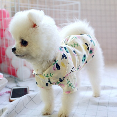 Summer Print Short Sleeeve Dog T-Shirt