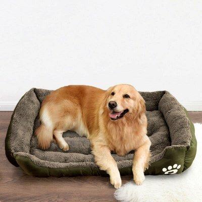 Pet Dog Bed Orthopedic Large Dog Beds_16