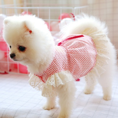 Spring And Summer uniformSspecial pet puppy T-shirt short skirt fashion clothes dog clothes pet dog clothes_1