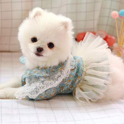 Princess Floral Dog Skirt For Girl Dog_1