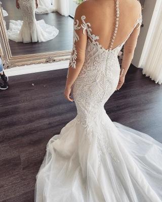 Elegant Jewel Long Sleeve Nude See Through Back Applique Fitted Mermaid Wedding Dresses_3
