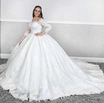 Bateau Plus Size Long Sleeve Applique Puffy Ball Gown Wedding Dresses_2
