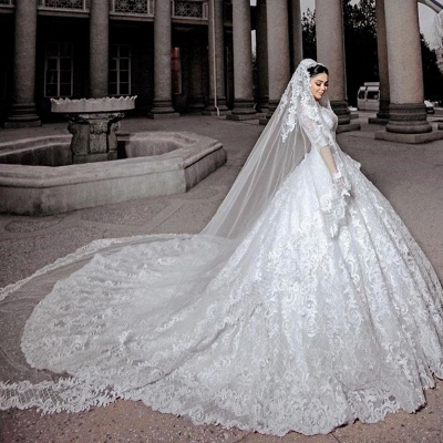 Gorgeous Tulle Lace Ruffles Ball Gown Cathedral Wedding Dresses With Long Sleeves_2