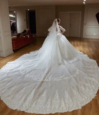 Sweetheart Lace Princess Wedding Dresses with Long Sleeves | Ball Gown Bridal Dress_3