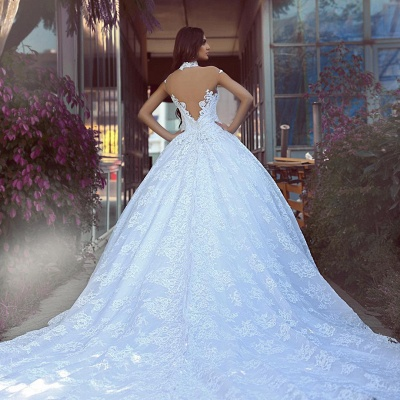 Lace High Neck Ball Gown Wedding Dresses | Sheer Back Wedding Gown_3
